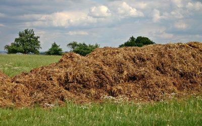 Biokaasun tuotanto kiinnostaa hevosalan toimijoita – Jokimaan alueelle suunnitteilla 3 miljoonan euron biokaasulaitos