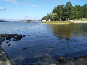 Vierailevana kirjoittajana Vesiposti- blogissa